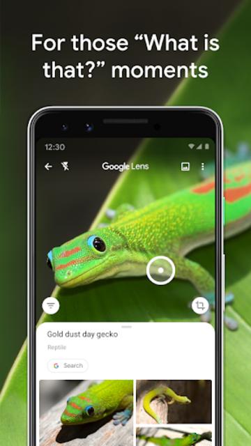 Google Lens screenshot 5