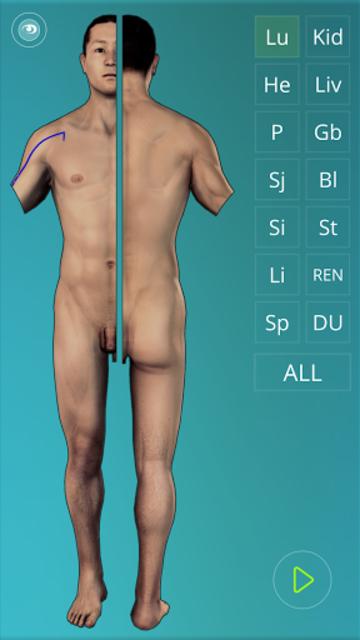 Acupuncture Quiz 3D - human screenshot 4