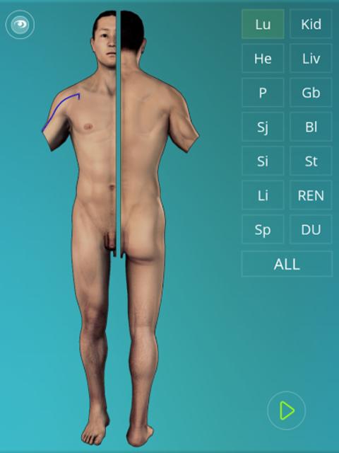 Acupuncture Quiz 3D - human screenshot 8