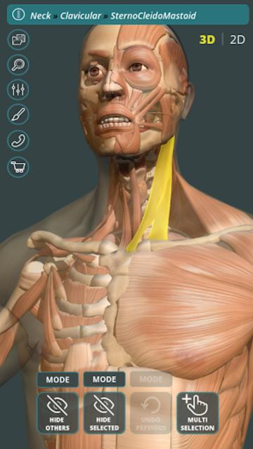 Visual Anatomy 3D | Human screenshot 1