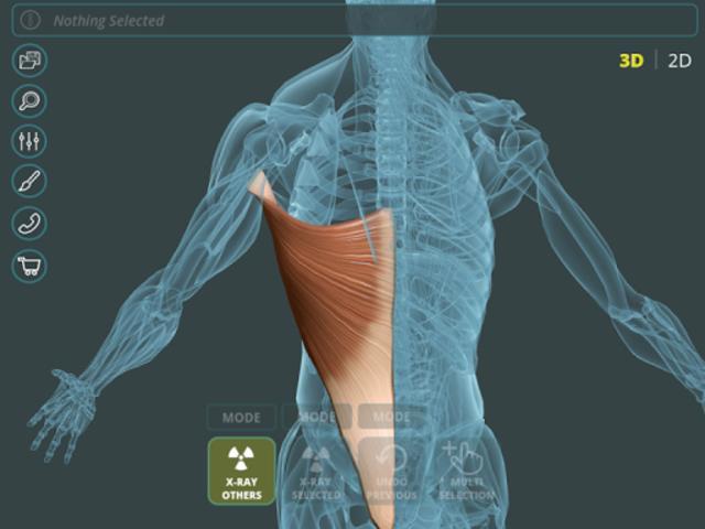 Visual Anatomy 3D | Human screenshot 10