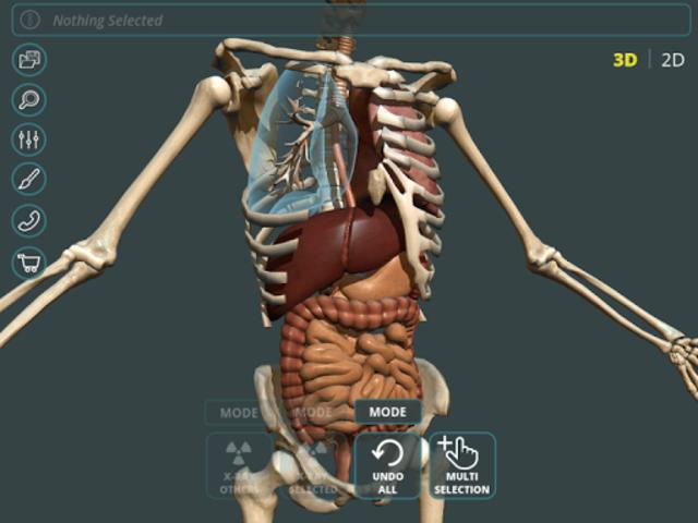 Visual Anatomy 3D | Human screenshot 12