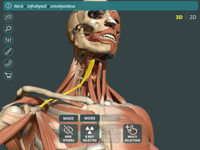 Visual Anatomy 3D | Human screenshot 16