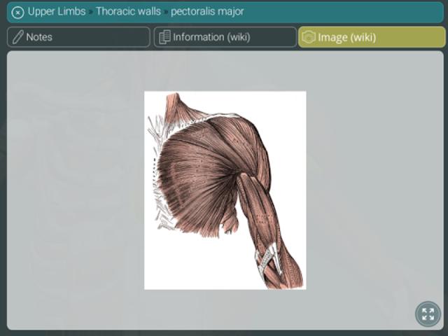 Visual Anatomy 3D | Human screenshot 21