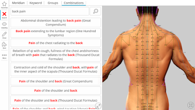 Visual Acupuncture 3D screenshot 4