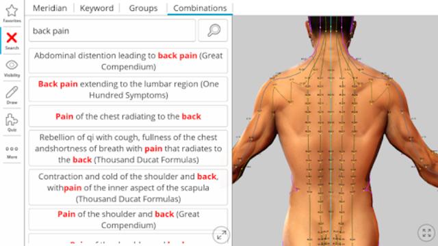 Visual Acupuncture 3D screenshot 10