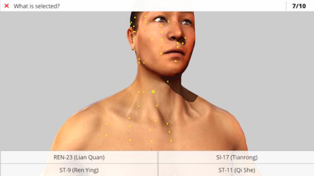 Visual Acupuncture 3D screenshot 11