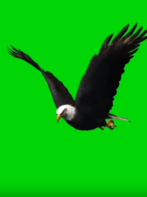 Green Screen Effect Video-Green Screen Videos 2020 screenshot 4