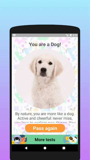 Are you a dog or a cat? Test screenshot 4