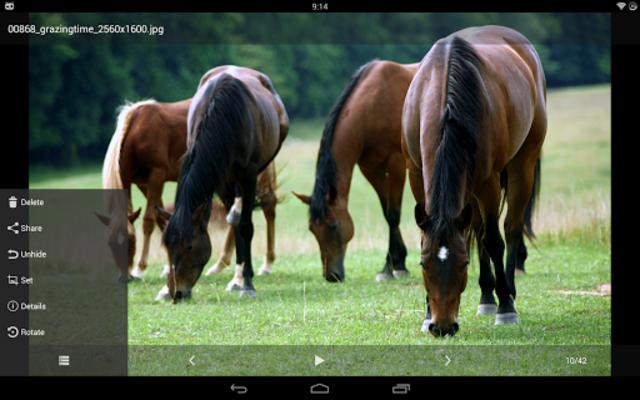 Hide Photos, Video and App Lock - Hide it Pro screenshot 13