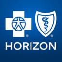 Icon for Horizon Blue