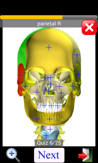 Anatomy Quiz Free screenshot 5