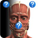 Icon for Anatomy Quiz Free