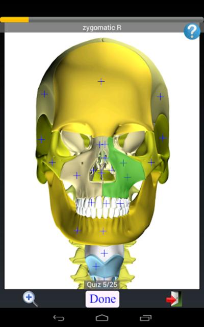 Anatomy Quiz Free screenshot 14