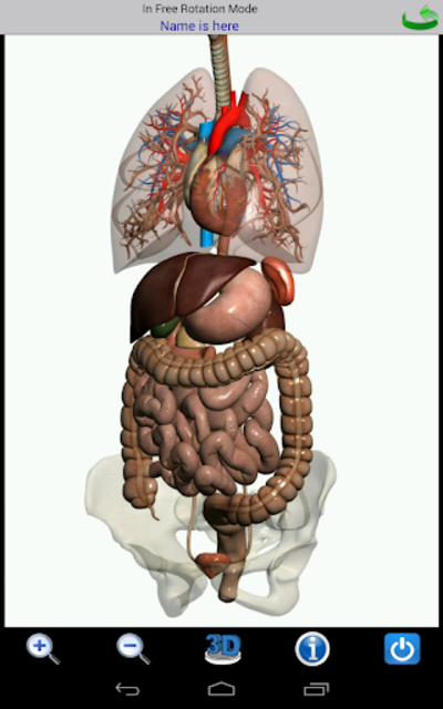 Visual Anatomy screenshot 16