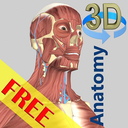 Icon for 3D Bones and Organs (Anatomy)