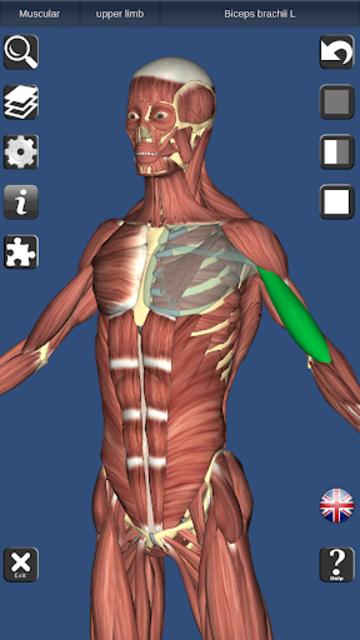 3D Bones and Organs (Anatomy) screenshot 1