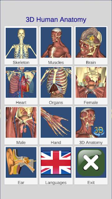 3D Bones and Organs (Anatomy) screenshot 3
