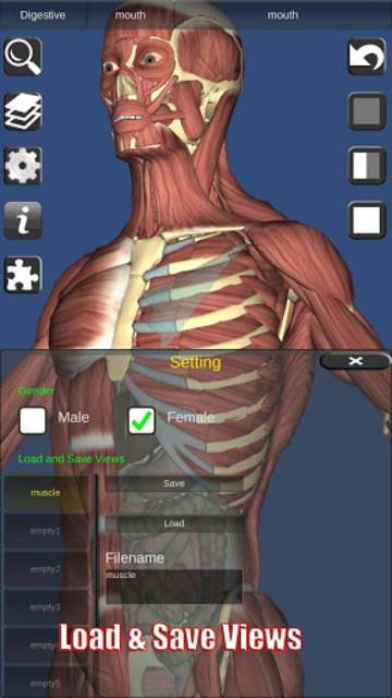 3D Bones and Organs (Anatomy) screenshot 8