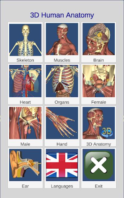 3D Bones and Organs (Anatomy) screenshot 11