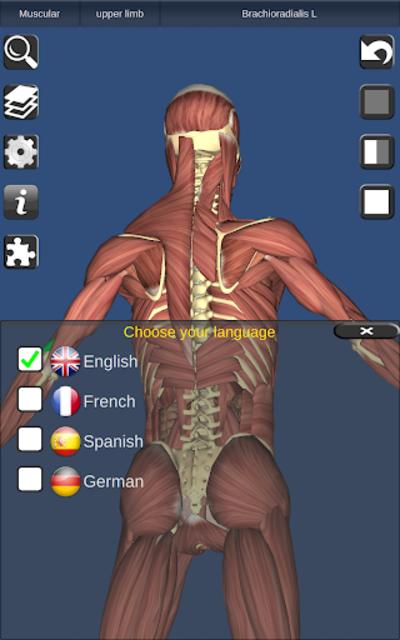 3D Bones and Organs (Anatomy) screenshot 20
