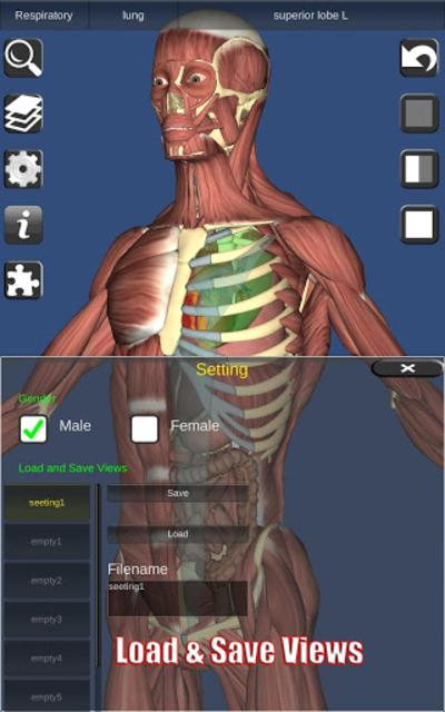 3D Bones and Organs (Anatomy) screenshot 24