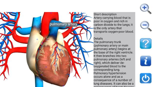 Visual Anatomy Free screenshot 7