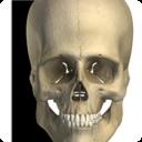 Icon for Visual Bones
