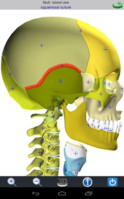 Visual Bones screenshot 10