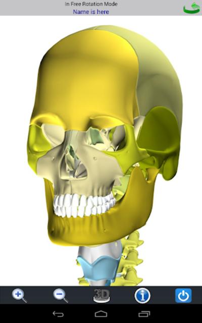 Visual Bones screenshot 11
