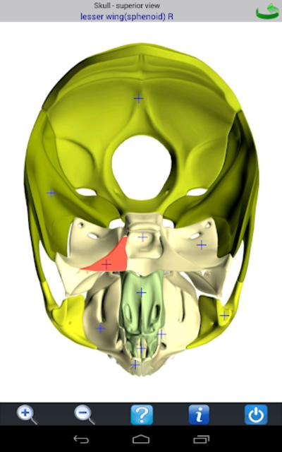 Visual Bones screenshot 12