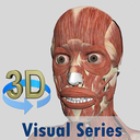 Icon for Visual Muscles 3D