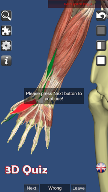 Visual Muscles 3D screenshot 13