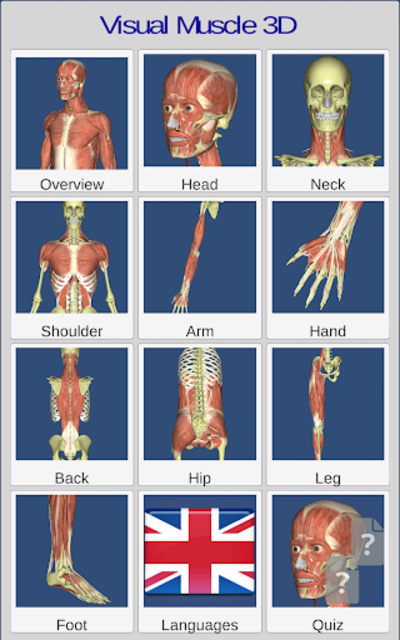 Visual Muscles 3D screenshot 15