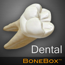 Icon for BoneBox™ - Dental Lite