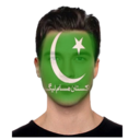 Icon for PMLN Flag On Face