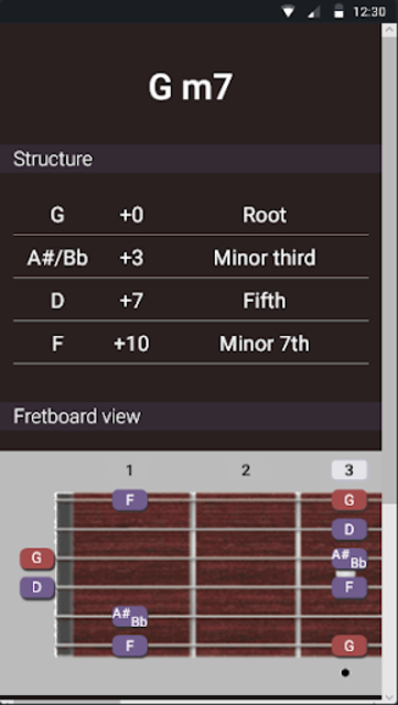 Guitar Chords and Scales screenshot 5