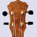 Icon for Ukulele Chords & Scales