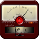 Icon for Pro Guitar Tuner