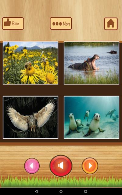 Learn English - Kids Apps screenshot 15