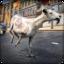 Frenzy Goat: A Simulator Game