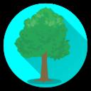 Icon for Tree Identifier App - Los árboles