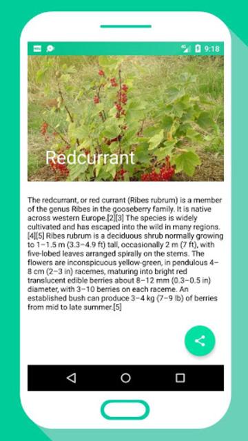 Tree Identifier App - Los árboles screenshot 5