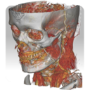 Icon for DroidRender - 3D DICOM viewer