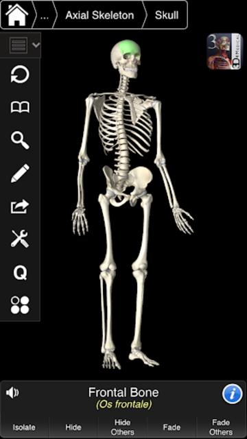 Essential Skeleton 3 screenshot 8