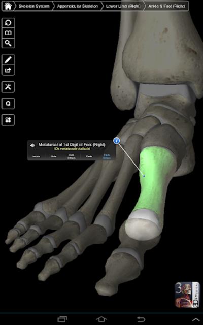 Essential Skeleton 3 screenshot 11