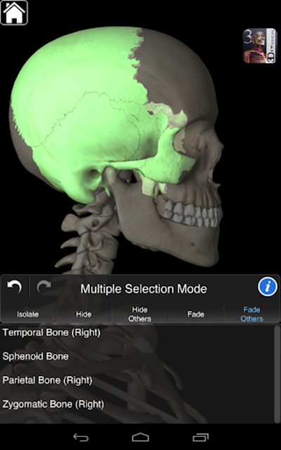 Essential Skeleton 3 screenshot 17