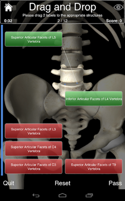 Essential Skeleton 3 screenshot 23