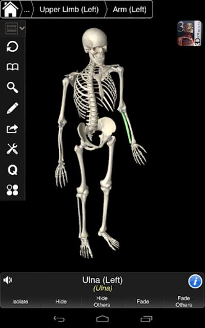 Essential Skeleton 3 screenshot 24