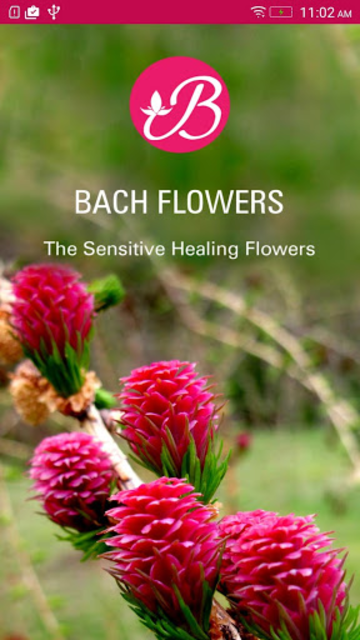 Bach Flower Remedies screenshot 1